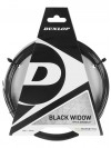 Dunlop Black Widow 18 String India