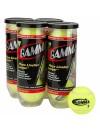 Gamma Championship Ball 24 Can Case