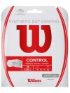 Wilson Synthetic Gut Control India 16 String
